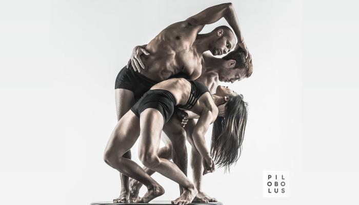 Pilobolus Dance Theater