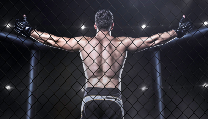 MotorCity Cage Night VIII - Live Mixed Martial Arts Fights
