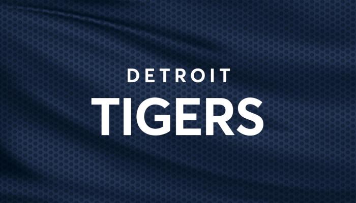 Detroit Tigers vs. Tampa Bay Rays