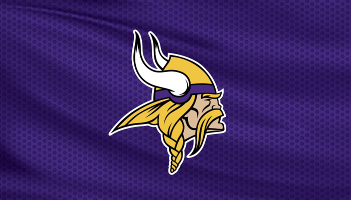 Minnesota Vikings vs. Detroit Lions