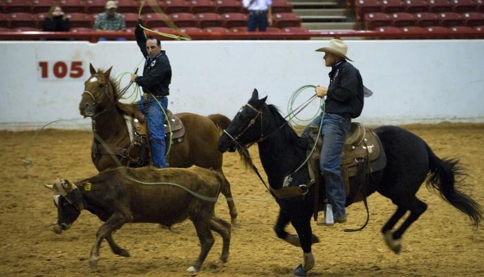 United Bull Riders Appreciation for Industry